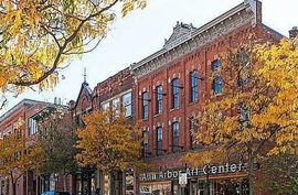 115 West Liberty Ann Arbor, MI 48104 Photo 4